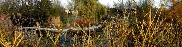 Langthorne Park large pond