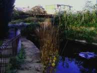Langthorne Park small pond