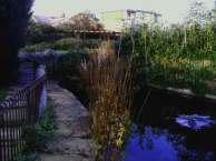 Langthorne Park small pond