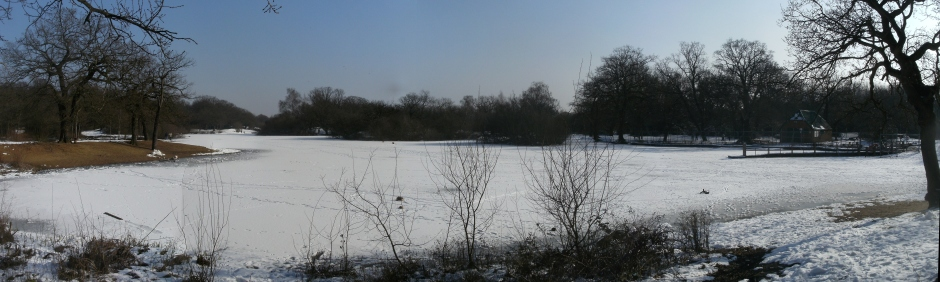 Hollow Pond in the snow