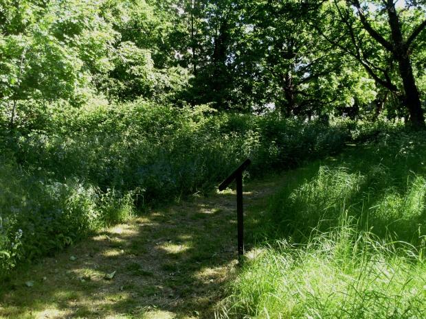 St John's Churchyard trail 1