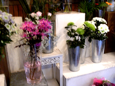 Bumblee Flowers