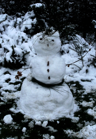 Hollow Ponds Snowman