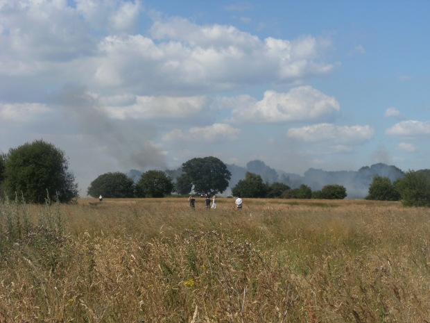 Hollow Ponds Fire