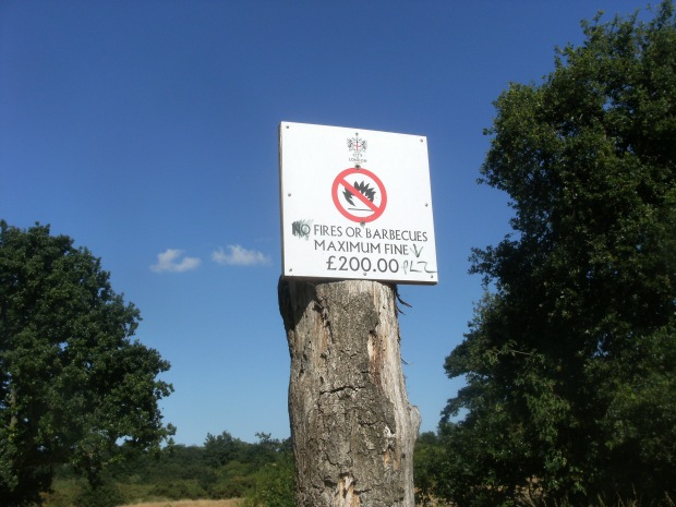 Epping Forest No Fires or Barbecues sign