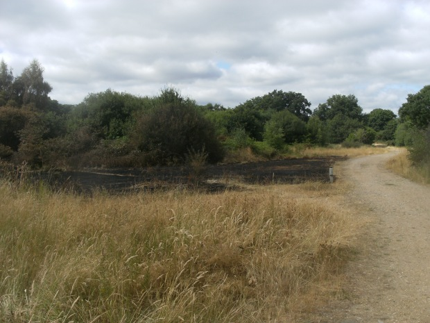 Fire damage near Snaresbrook Road